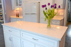 south_woodland_kitchen_remodel_2