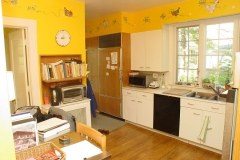 wellington_road_kitchen_remodel_b3